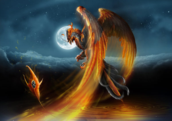 The Phoenix Bird Mythical Creature ⋆ Mythical Realm